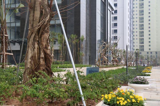 Quy hoạch giao thông tạo cú hích thị trường BĐS Tây Hà Nội